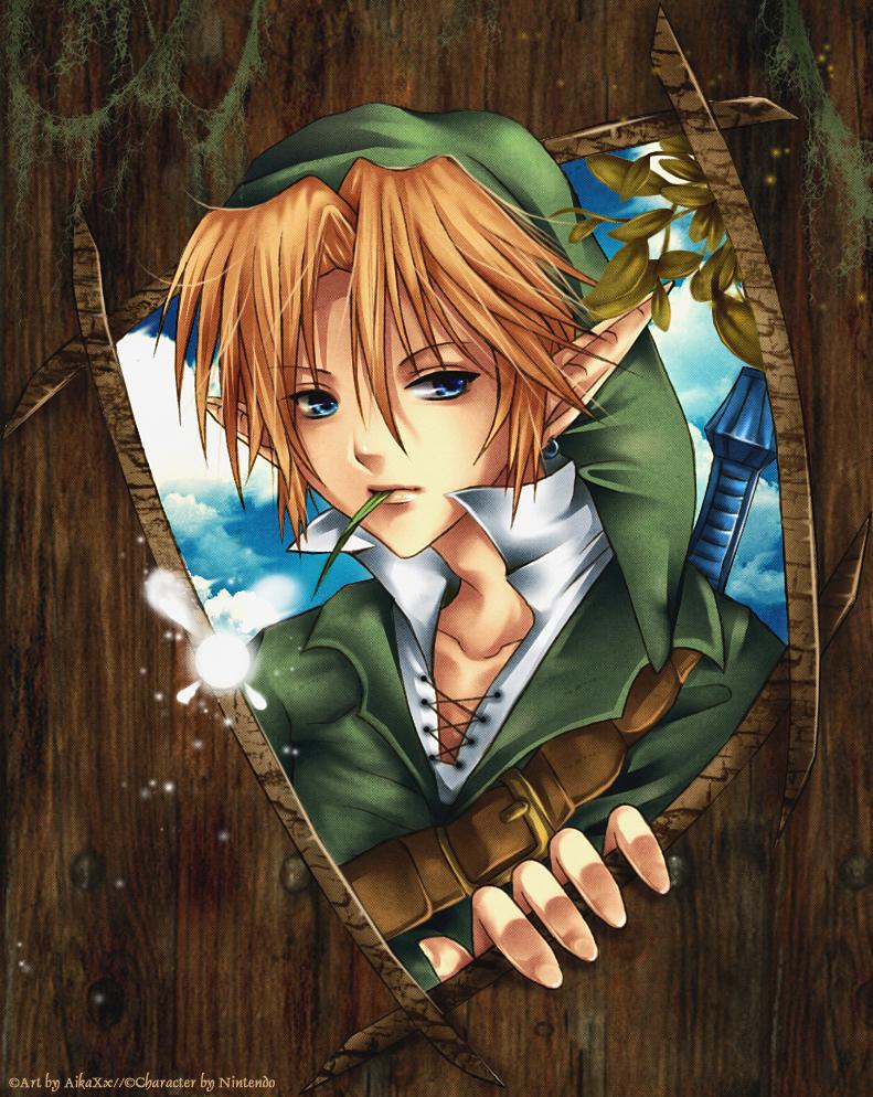 Link - Zelda by AikaXx
