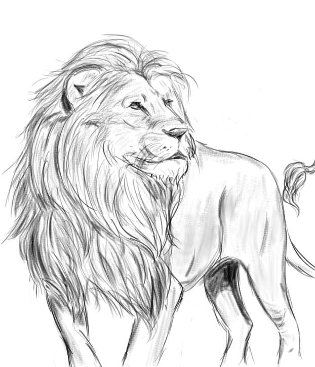 The Mighty Lion by Aisalynn