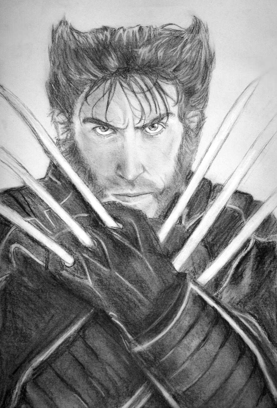 Wolverine: The Adamantium Rage by Ambitsu