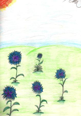 Flowers by AngelicKitten
