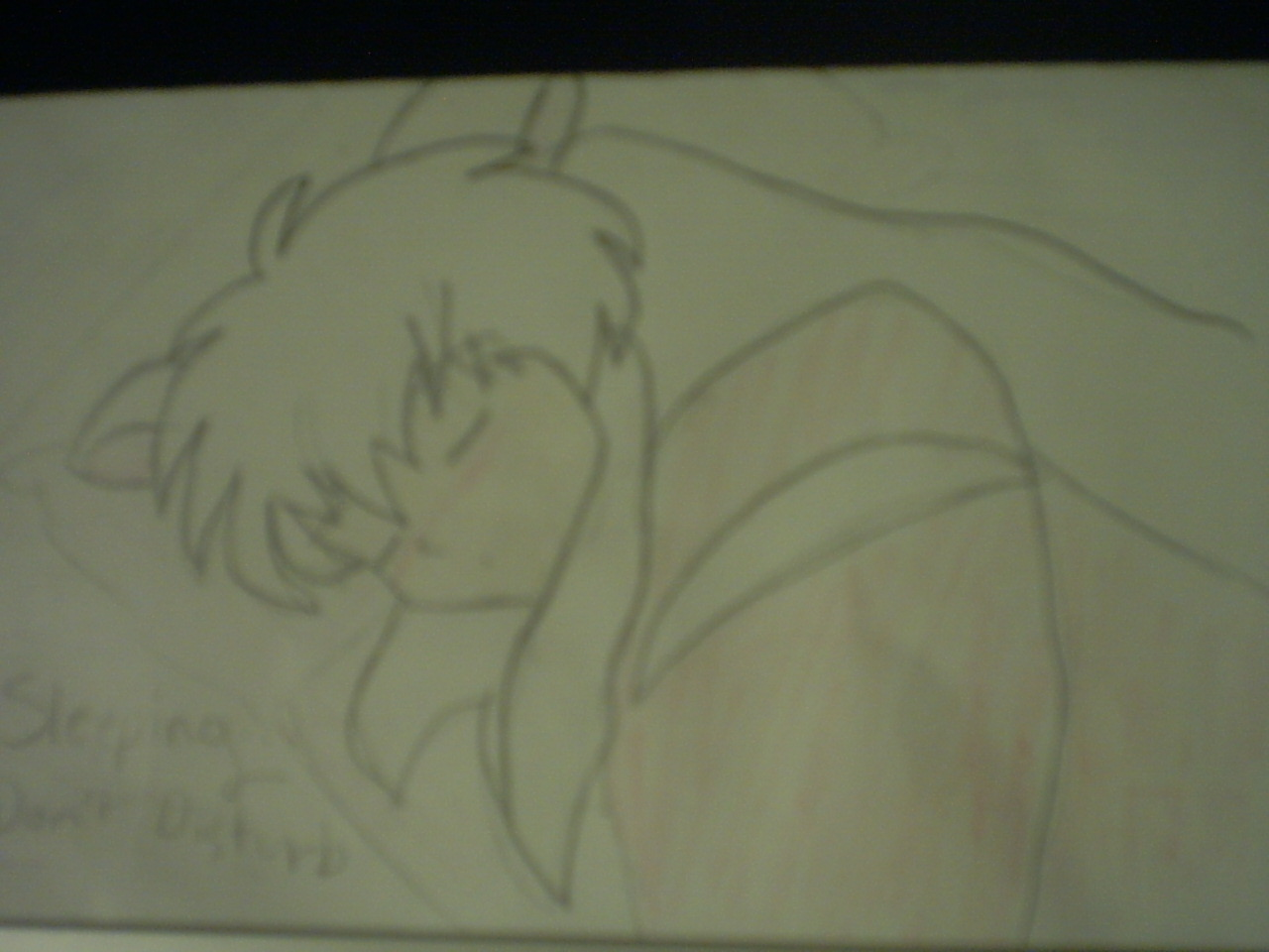 Inuyasha sleeping by AnimeFan95
