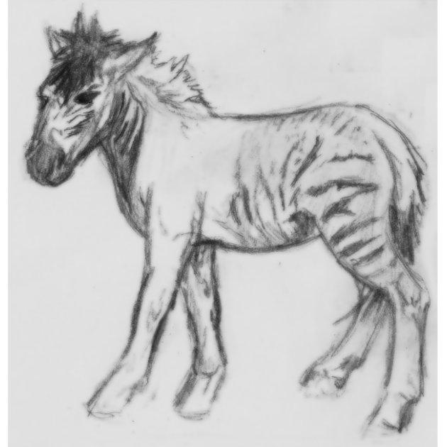 Horse by Arachne