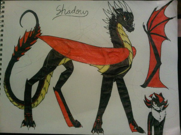 shadow dragonized by anaithehedgehog1
