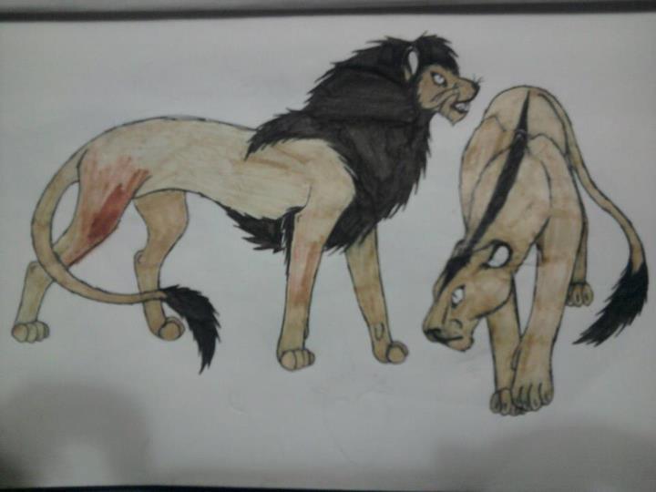 lions by anaithehedgehog1