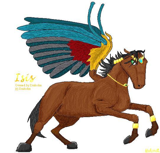 A deset horse by animel