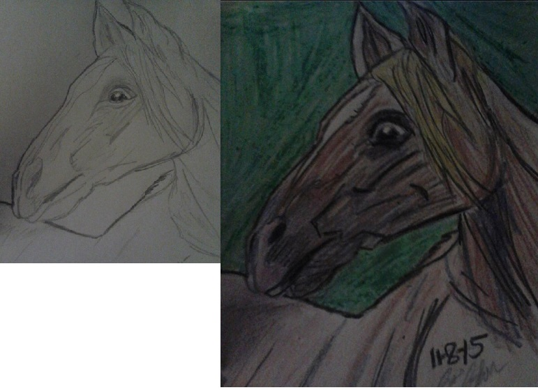 horse sketch by artfreakjess1