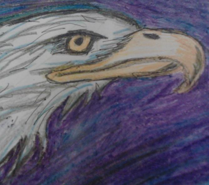 eagle eye by artfreakjess1