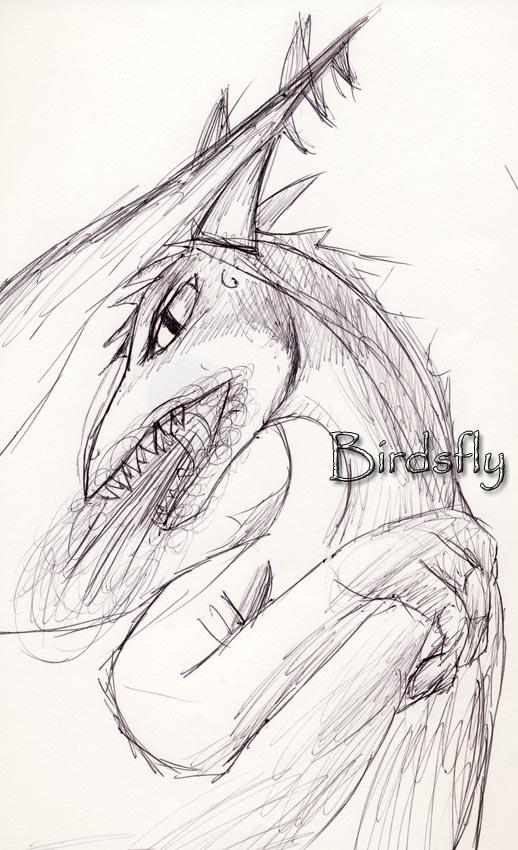 Dragon by Birdsfly