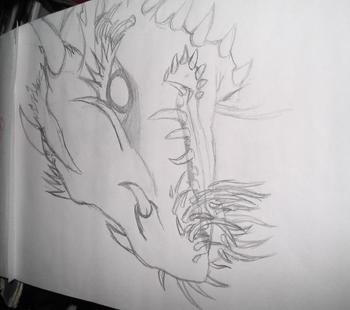 Dragon sketch by BlackRose_Archer