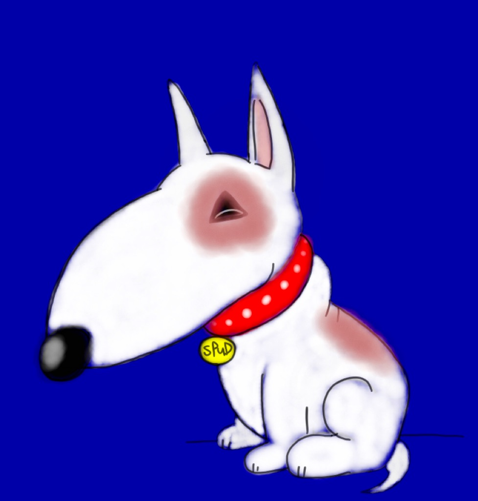 Cute bull terrier by BtasJokerFan