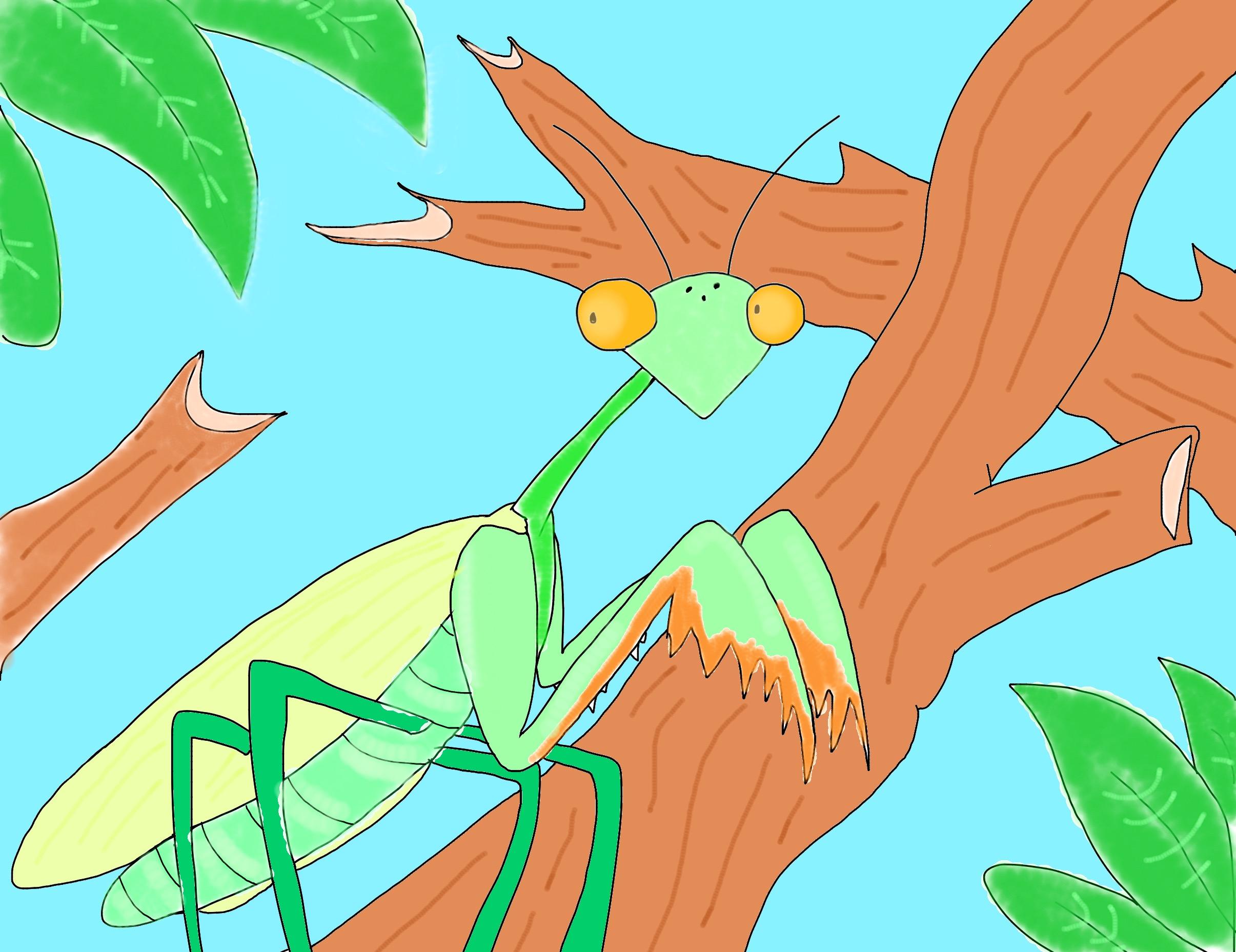 Cartoon mantis. by BtasJokerFan