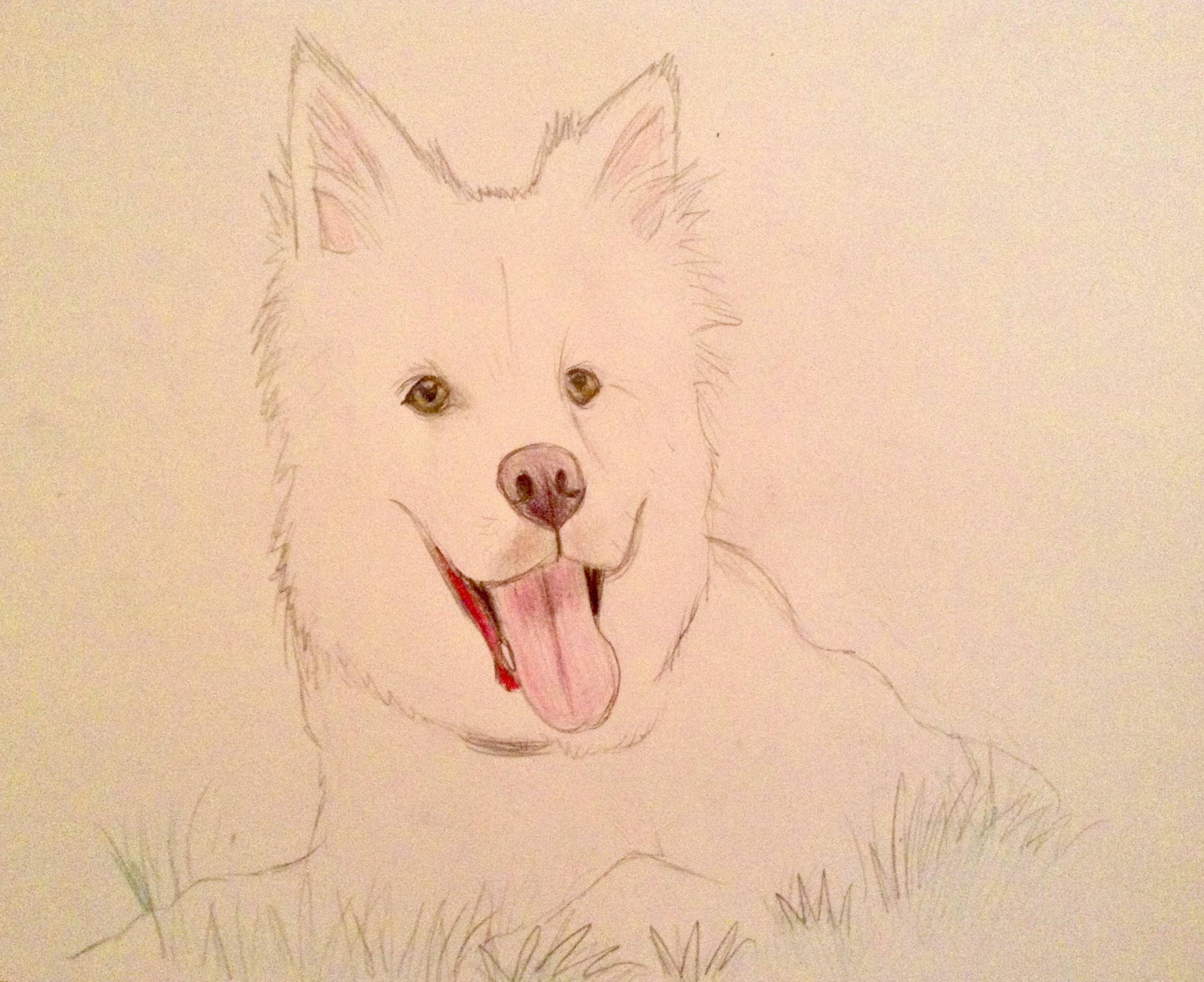 My next realistic dog sketch by BtasJokerFan