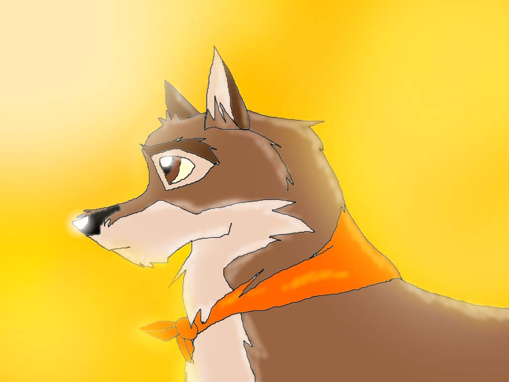Balto in The Sunset by Butch101
