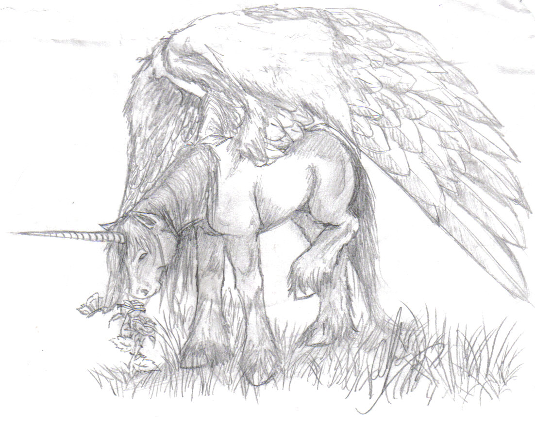 ~*Unicorn with Wings*~ by Butterfly_Chaiser