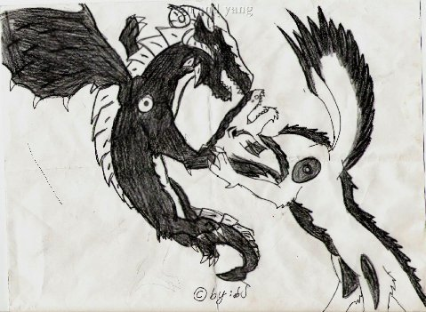 Yin &Yang at a canstant war by barbara