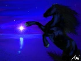 ...a Faceless Horse... by blind_stranger
