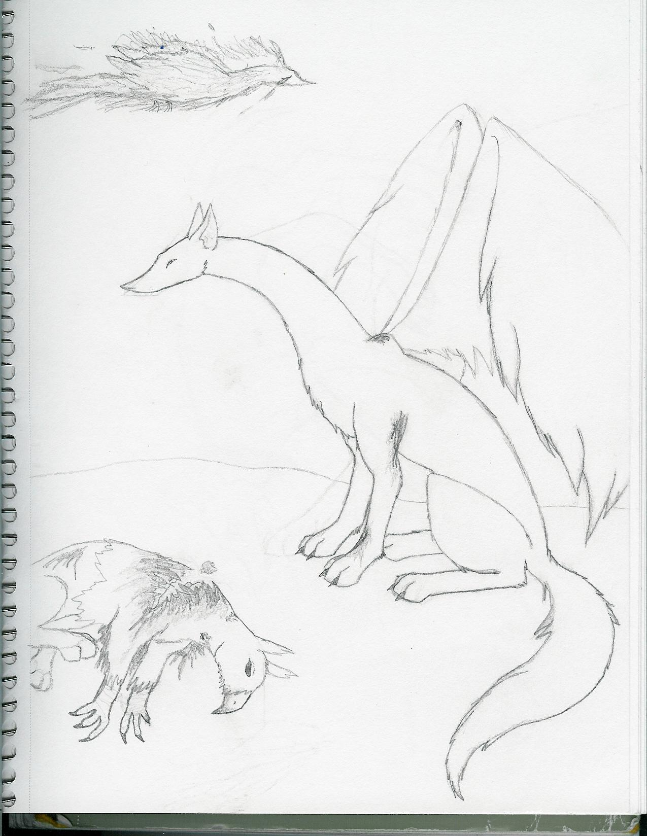 Wolf Dragon by blood_of_inuyasha