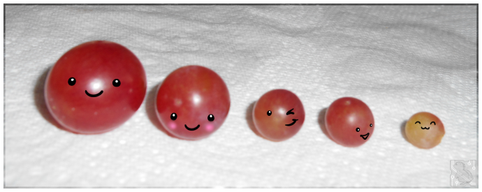 Grape Family by CRwixey
