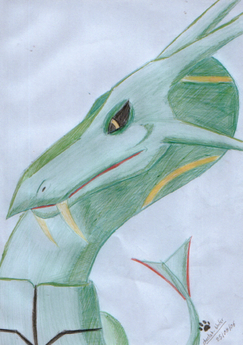 Rayquaza Colored by Cheetah-blader