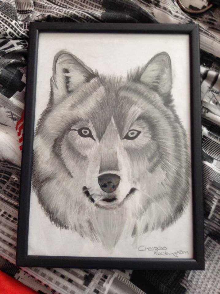 Wolf Charcoal Drawing by Chelsea93roc