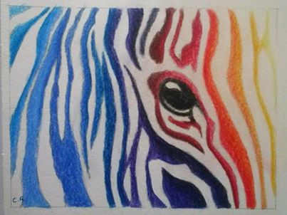 Zebra by Chelsea93roc