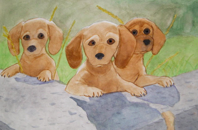 Tilly's Pups -Watercolor- by CrazyKomouri