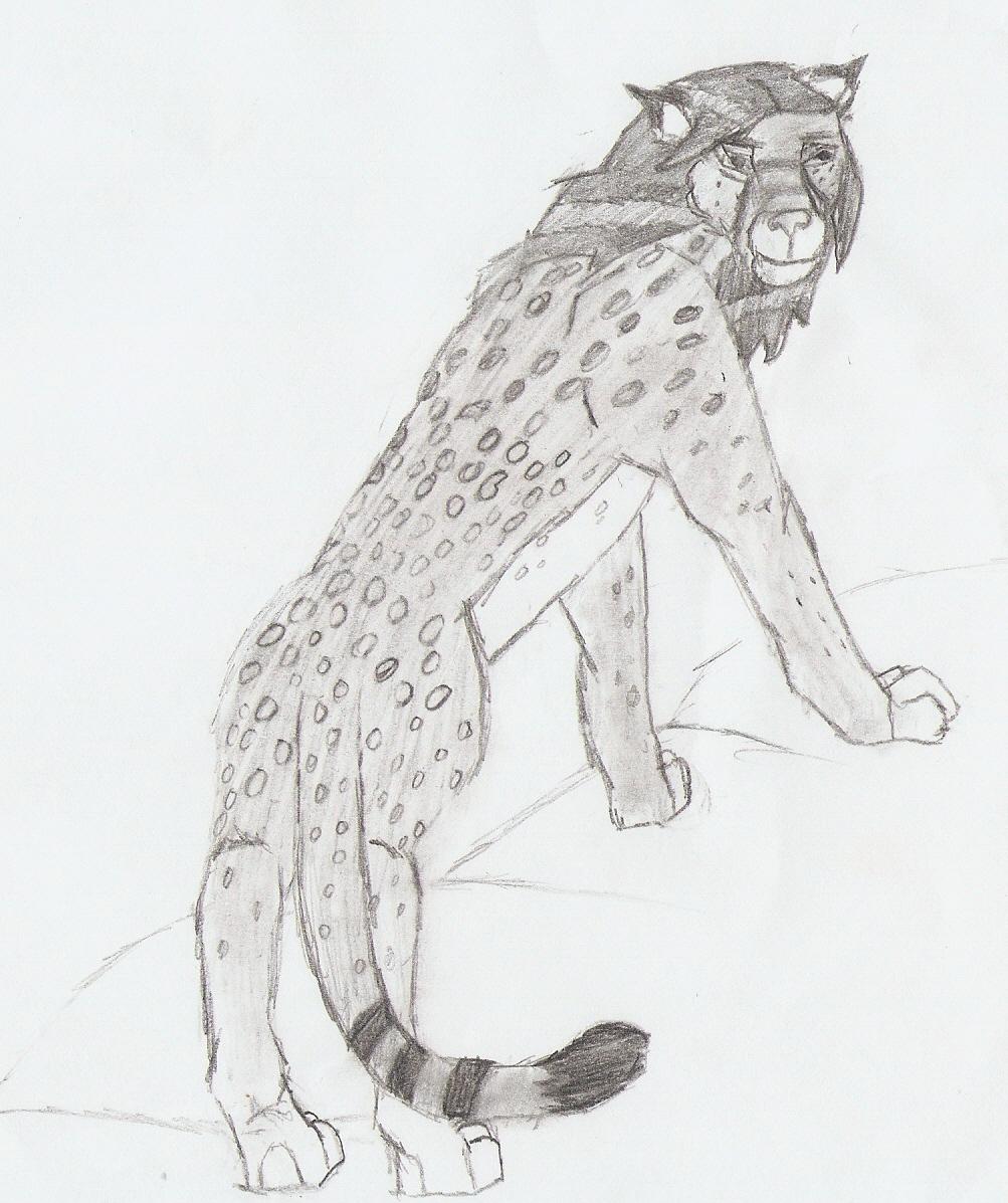 Snow Leopard by DameFortune