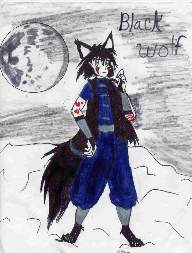 Black wolf by DarkDemonWolf