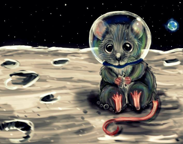 Space Mouse! by DarkDragon11