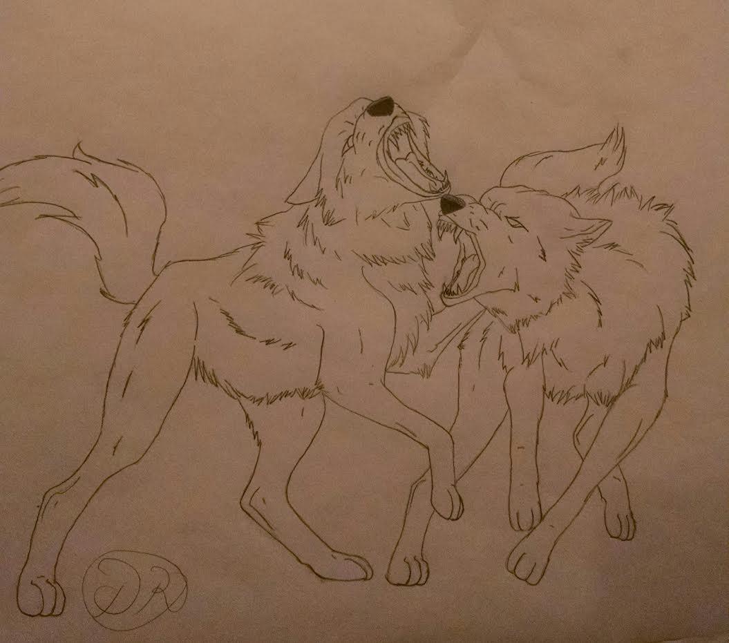 Fighting Wolves by DestinyRider