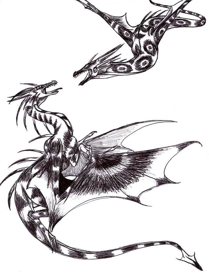 Sky Battle by Dracoanimegurl