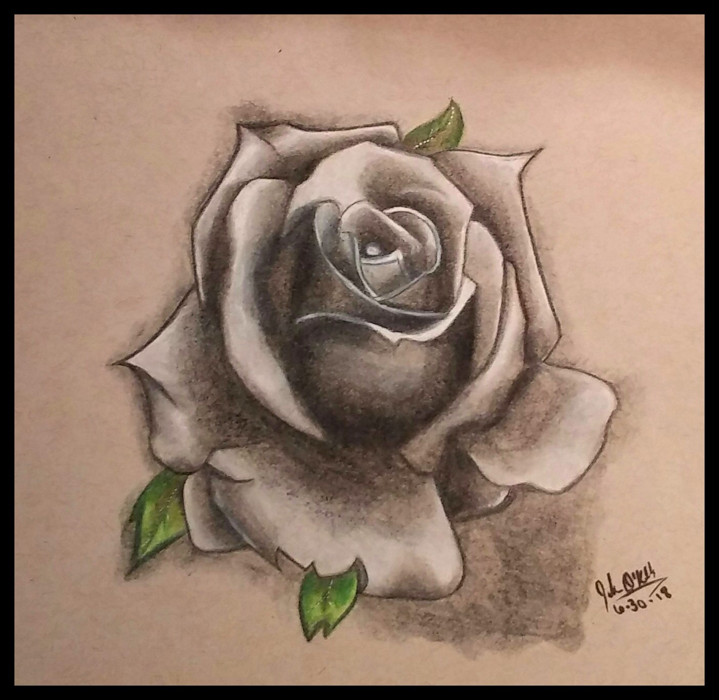 A rose study by demonofsand