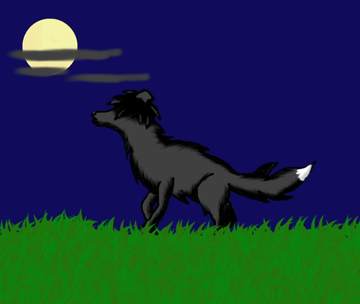binx as a wolf by EdgarRocks