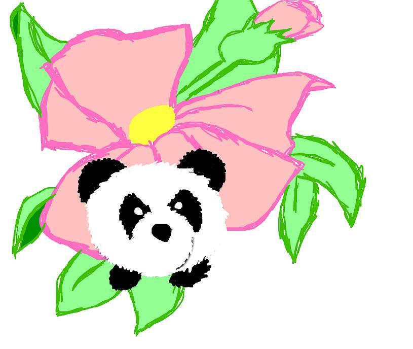 Sakura Panda >w< by EmiKoizumi