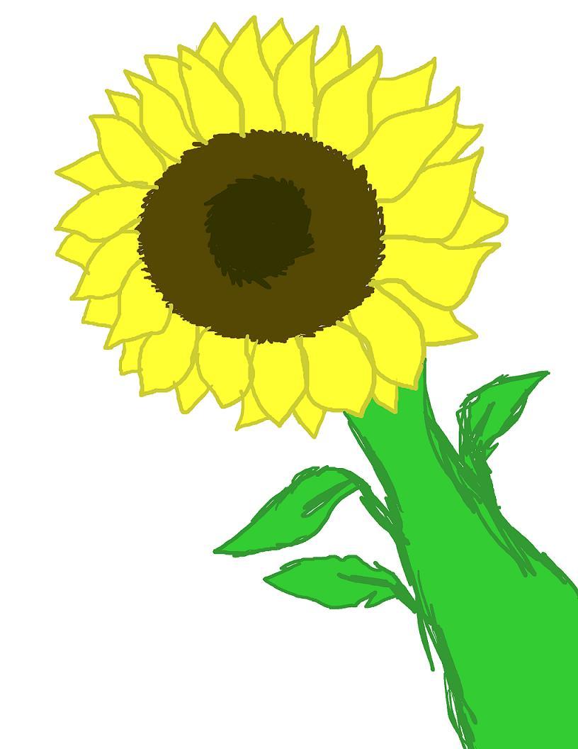 Sunflower by EmiKoizumi