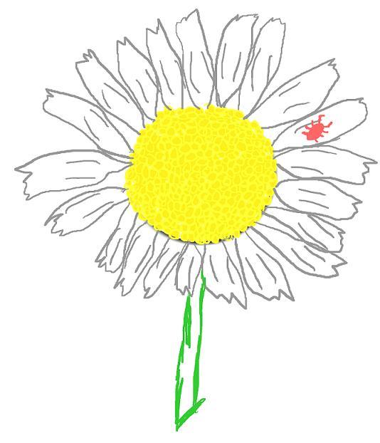 Daisy Bug by EmiKoizumi