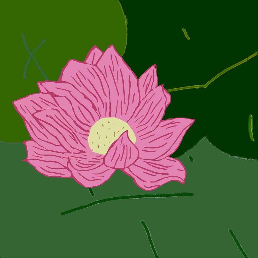 Lotus Flower by EmiKoizumi