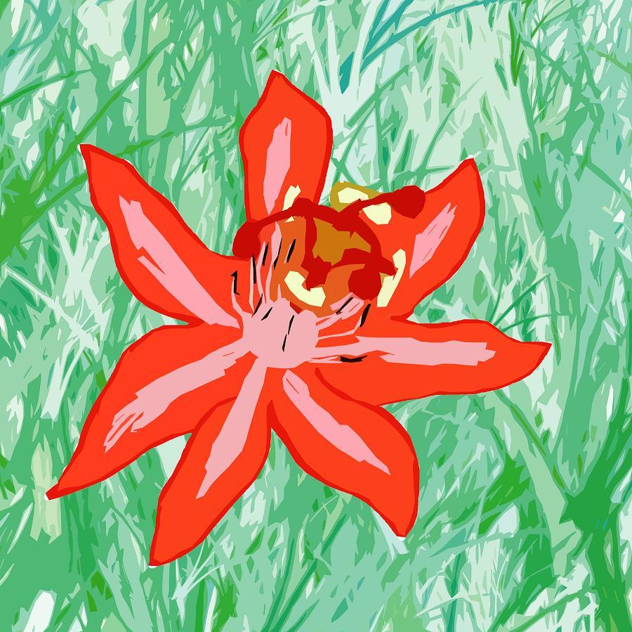 Passion Flower by EmiKoizumi