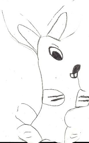 Year Of The Rabbit by Falconlobo
