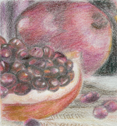 Pomegranate by Firiel