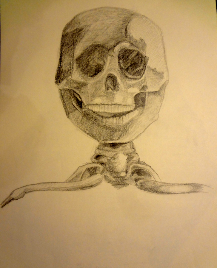 Skull by Firiel