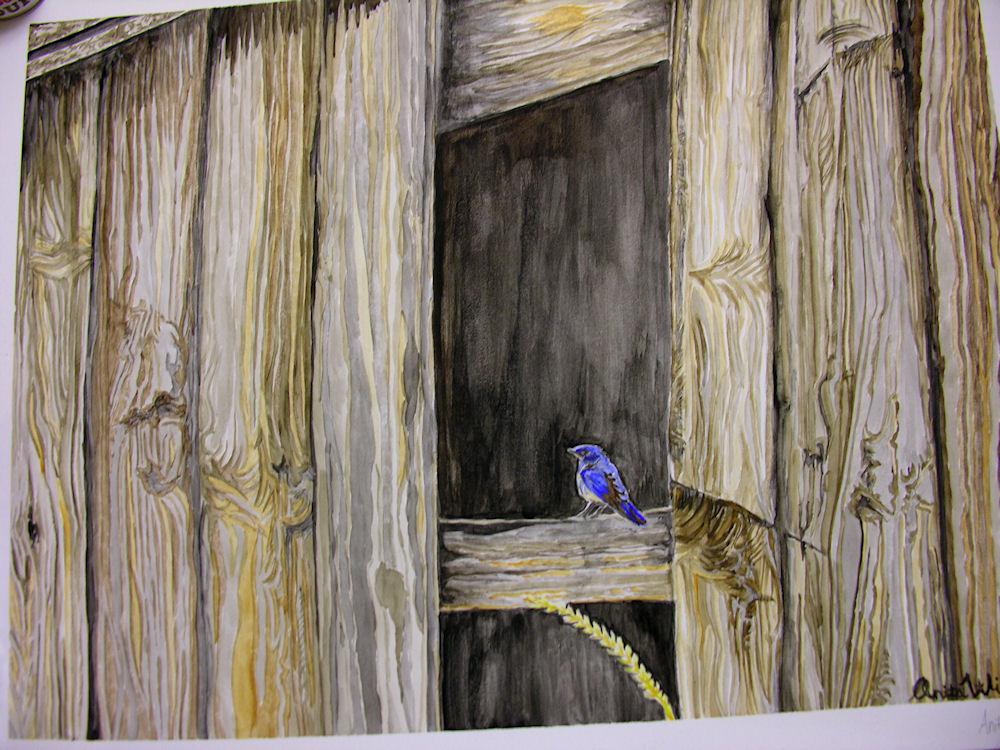 Bluebird by Firiel
