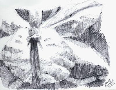 inktober4 - orchid by Firiel