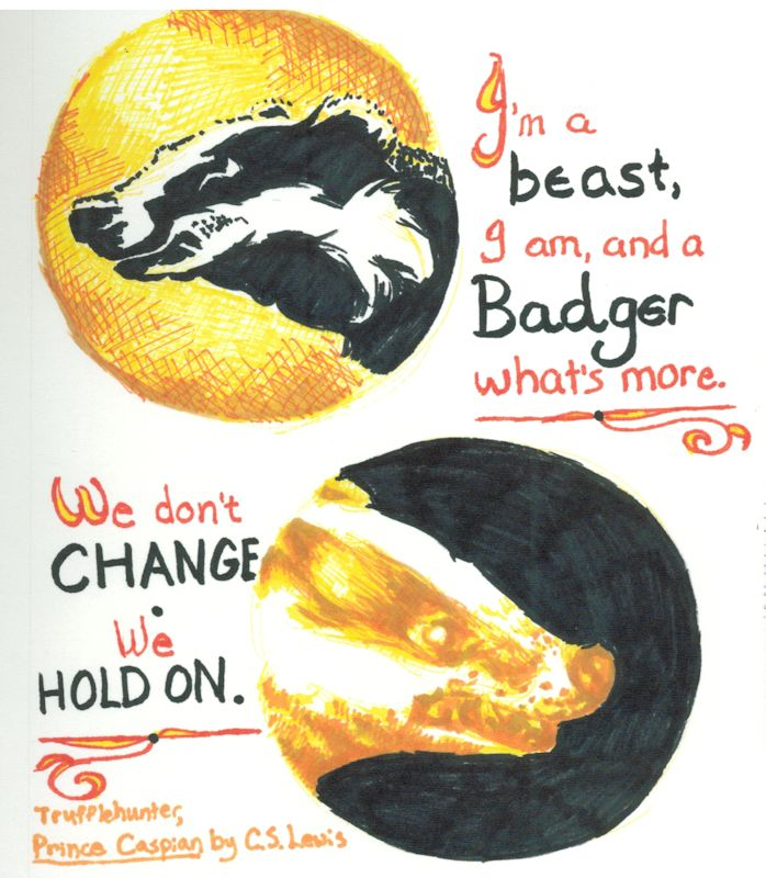 For the Badgers by Firiel