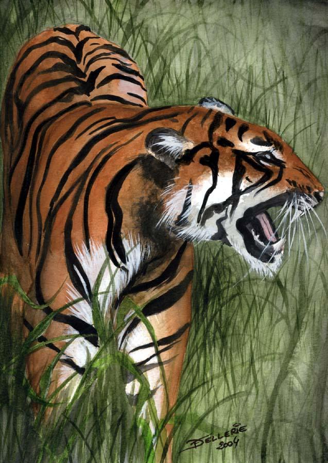 Tigre à l'affût by Florence