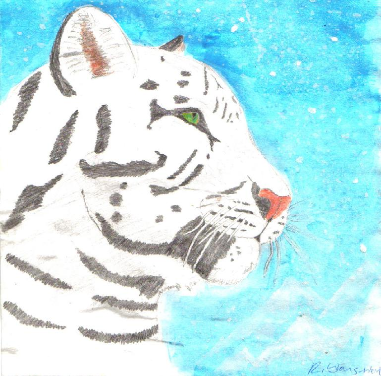 White tiger in snow by Fluffybunny