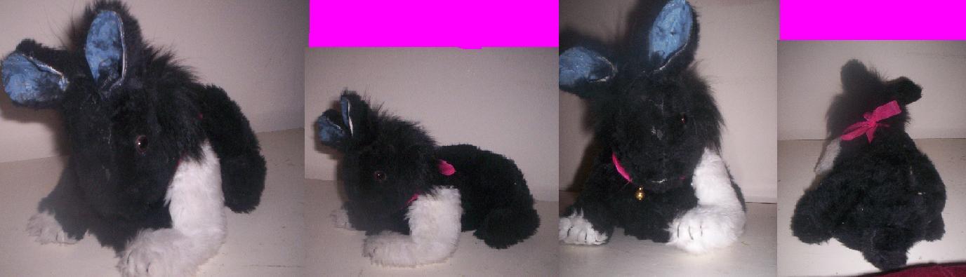 My rabbit plushie! by Fluffybunny