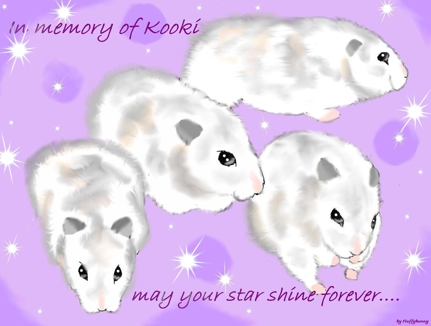 in memory of kooki: for Sliver_Flame by Fluffybunny