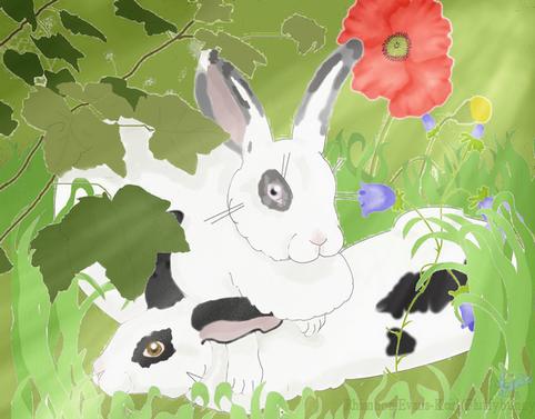 hidden bunnies by Fluffybunny
