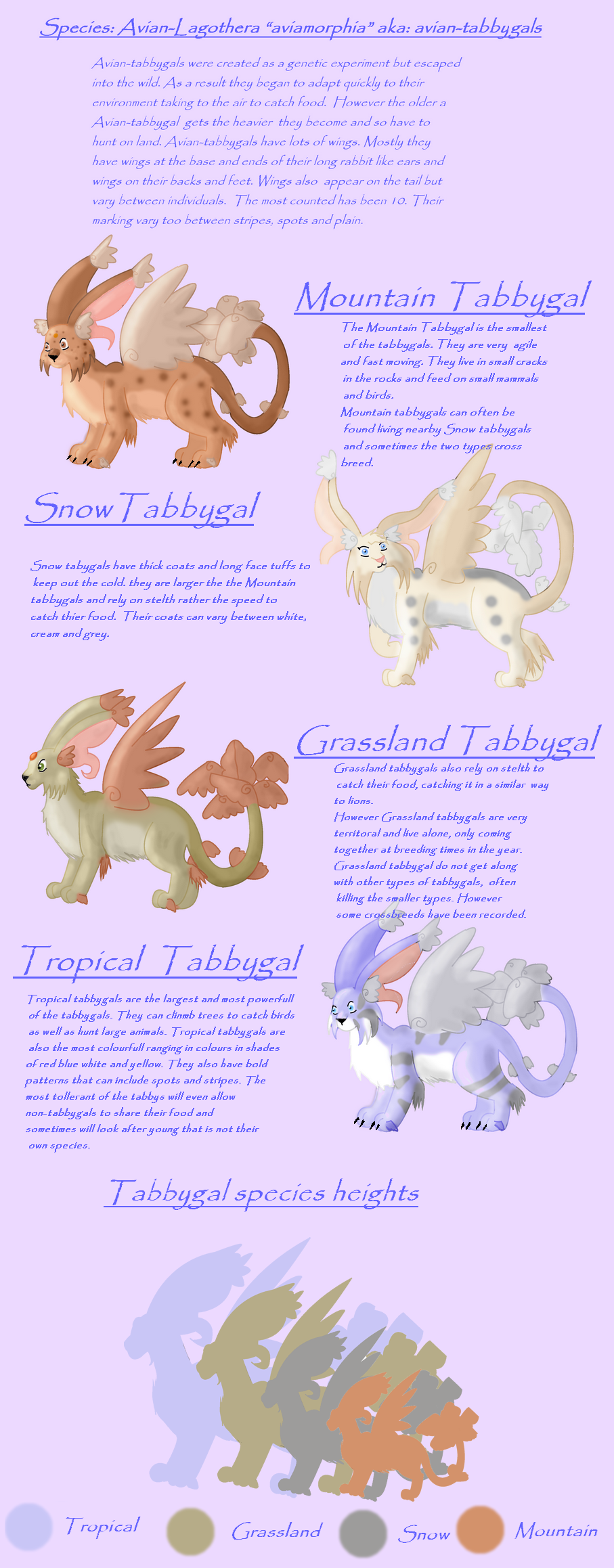Tabbygal ref sheet by Fluffybunny